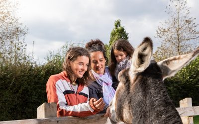Family enjoys meeting friendly donkey